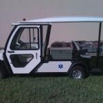 Custom Vehicles
