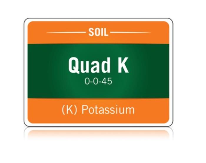 Quad K